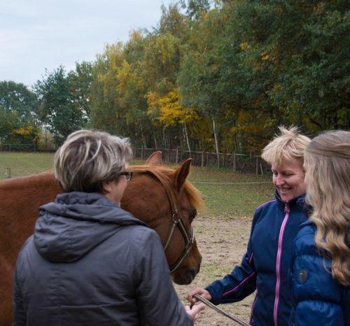 Carin Camp coachen met Paarden (135)