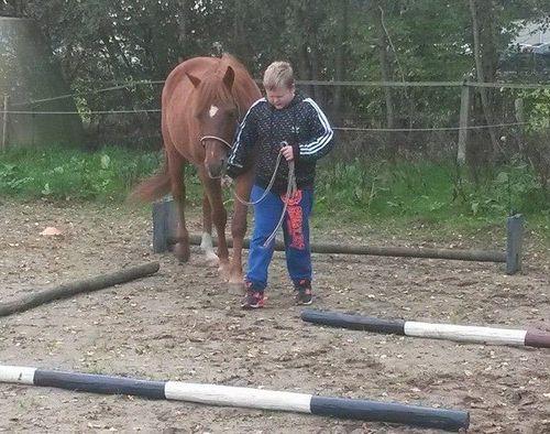 Carin Camp coachen met Paarden (22)