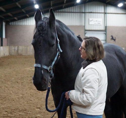 Carin Camp coachen met Paarden (223)