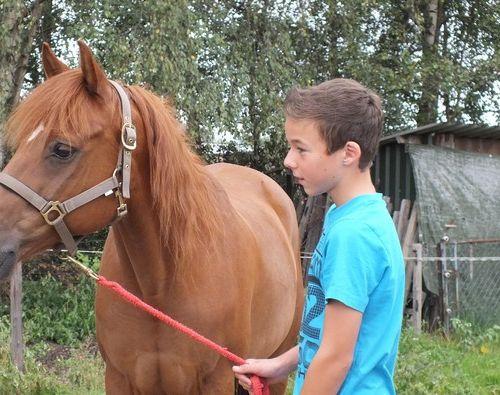 Carin Camp coachen met Paarden (23)
