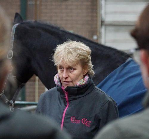 Carin Camp coachen met Paarden (315)