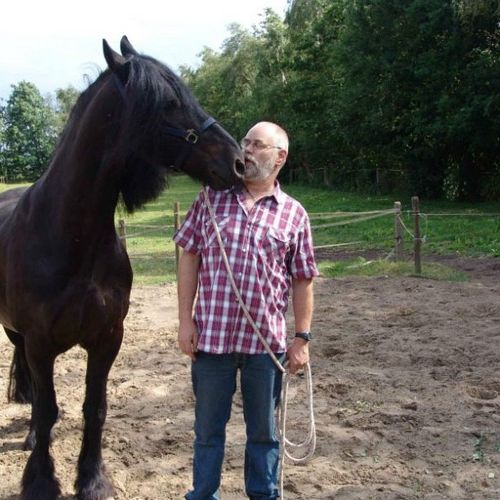 Carin Camp coachen met Paarden (34)