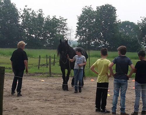 Carin Camp coachen met Paarden (36)